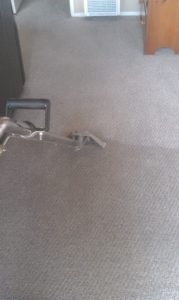 Before and After a Deep Steam Carpet Cleaning